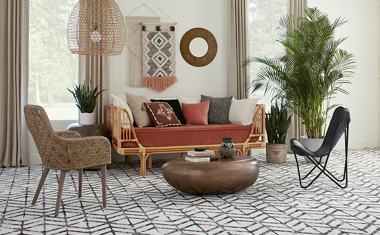 Modern living room with carpeted flooring